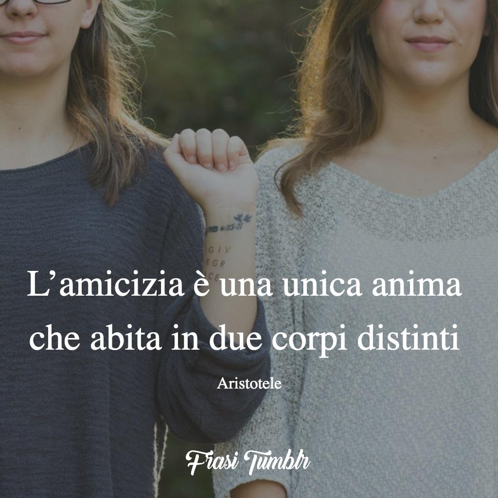 amiche amicizia frasi unica anima in due corpi distinti diversi frase aristotele