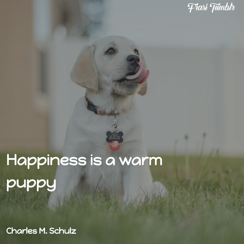 frasi-animali-inglese-felicità-cucciolo