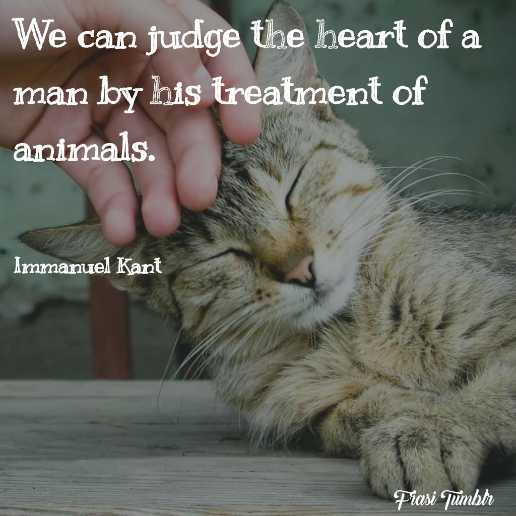 frasi-animali-inglese-giudicare-cuore-uomo-tratta-animali