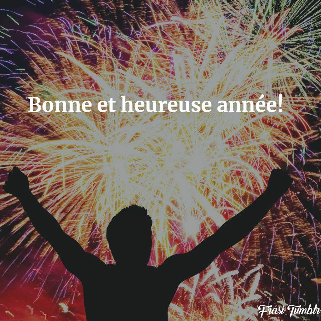 frasi-auguri-buon-felice-anno-nuovo-francese