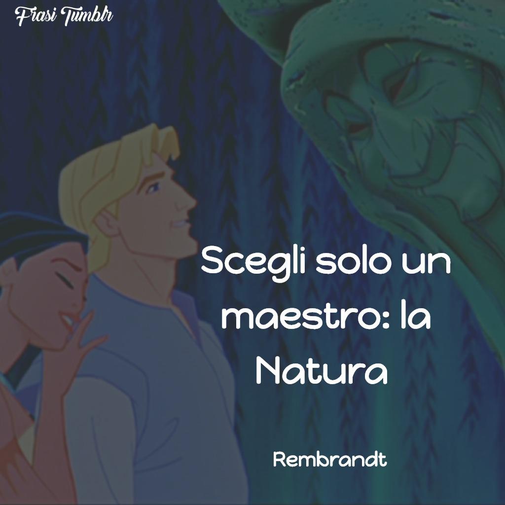 frasi-bellezza-natura-maestro
