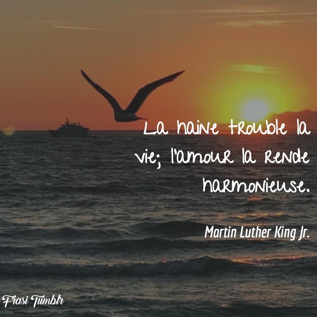 frasi-amore-francese-odio-armoniosa