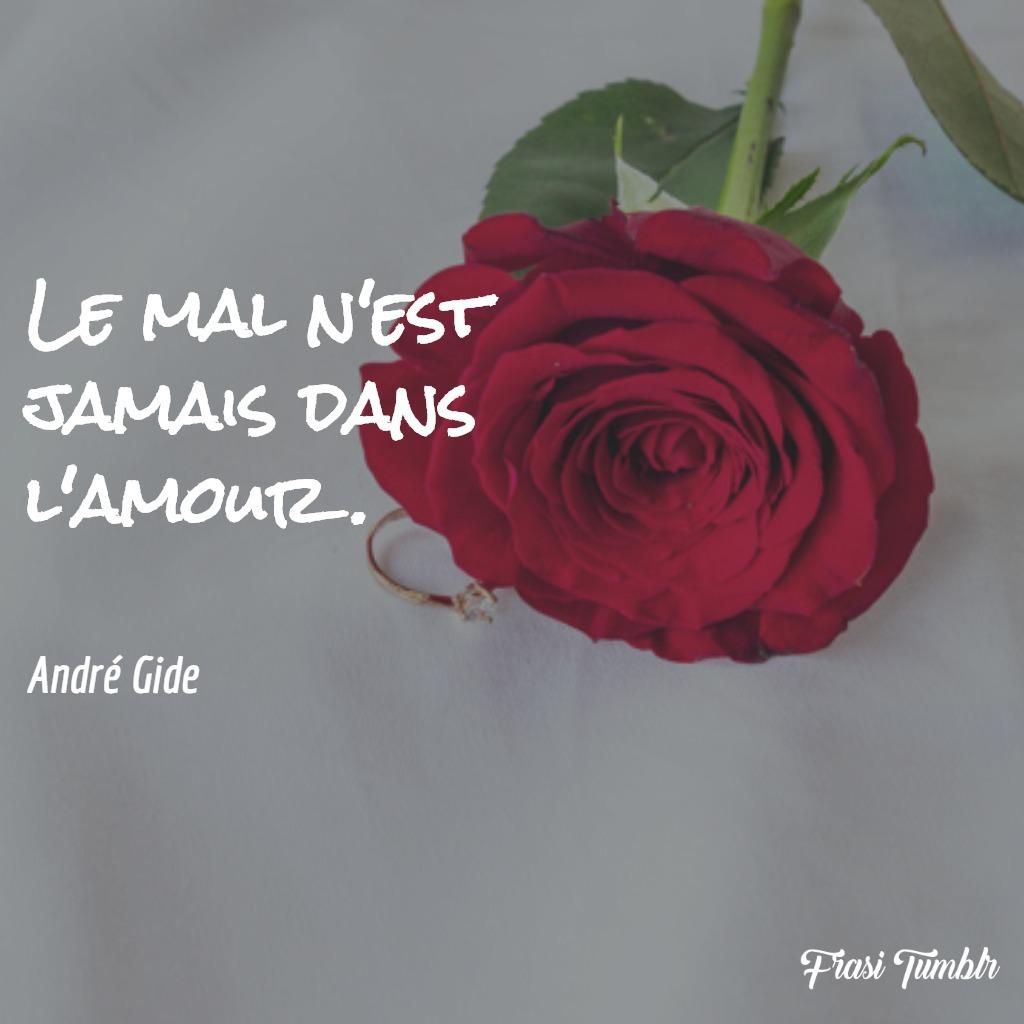 frasi-amore-francese-male