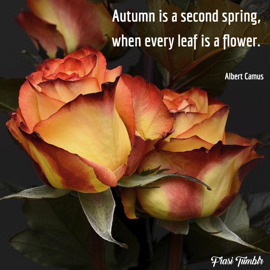 frasi-autunno-inglese-seconda-primavera-fiori
