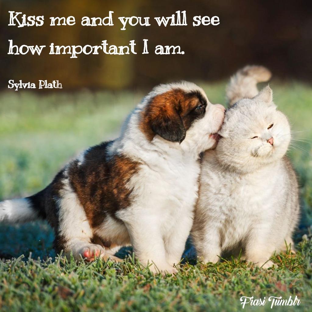 frasi-baciami-inglese-importante