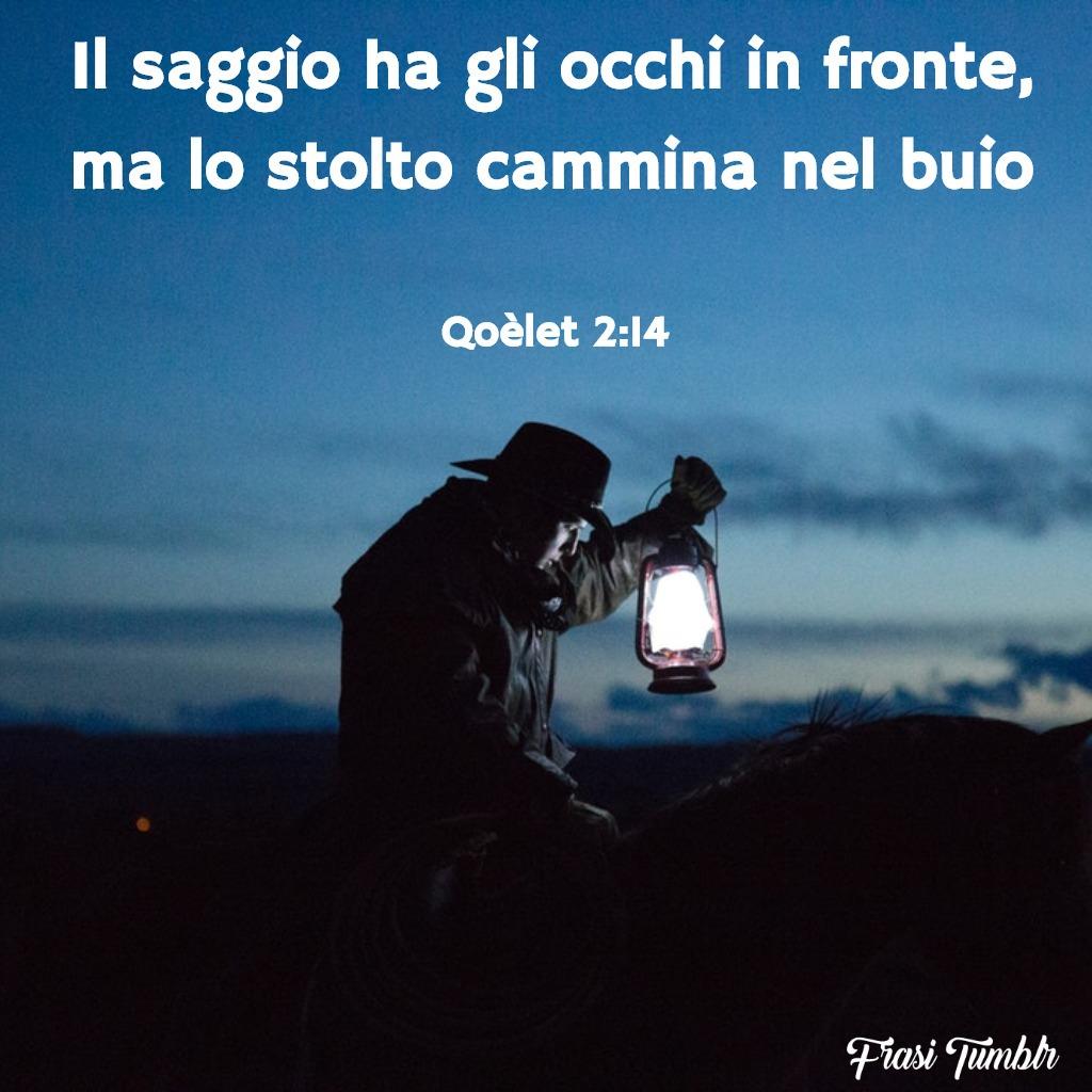 frasi-bibbia-saggio-stolto-cammina-buio