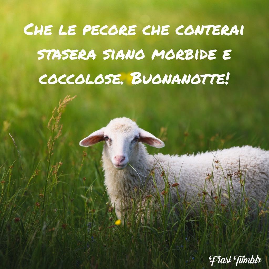 frasi-buonanotte-amica-pecore