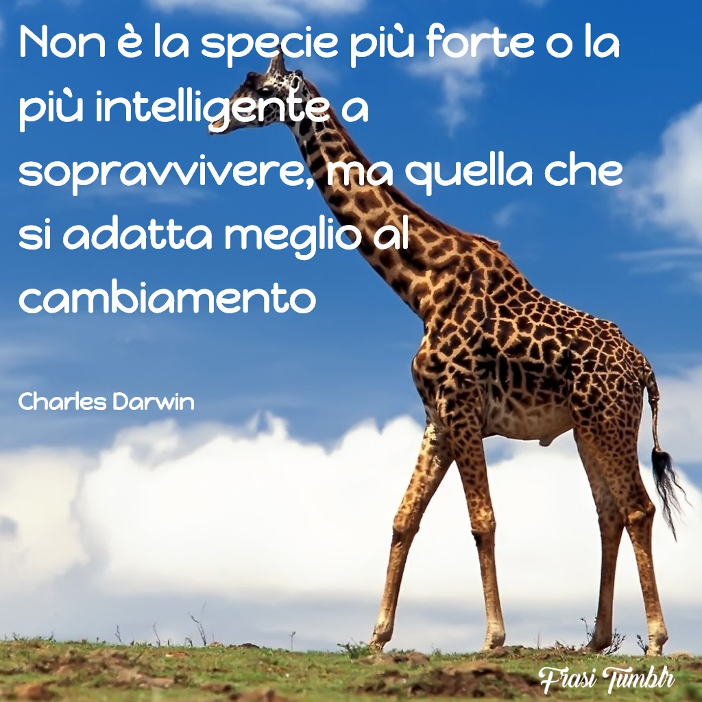 frasi-cambiamento-specie-darwin