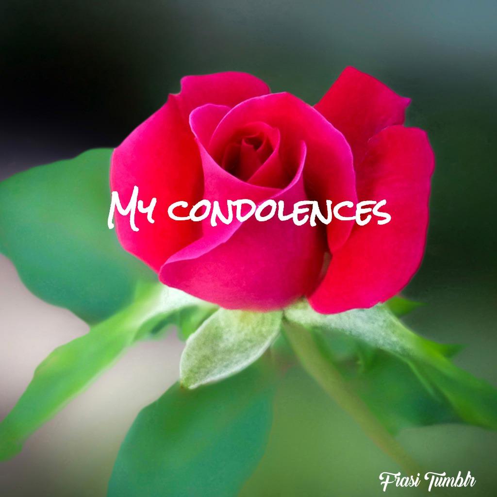frasi-condoglianze-perdita