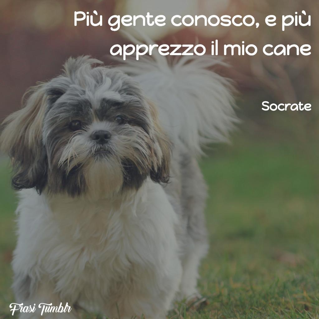 frasi-filosofi-greci-gente-cane