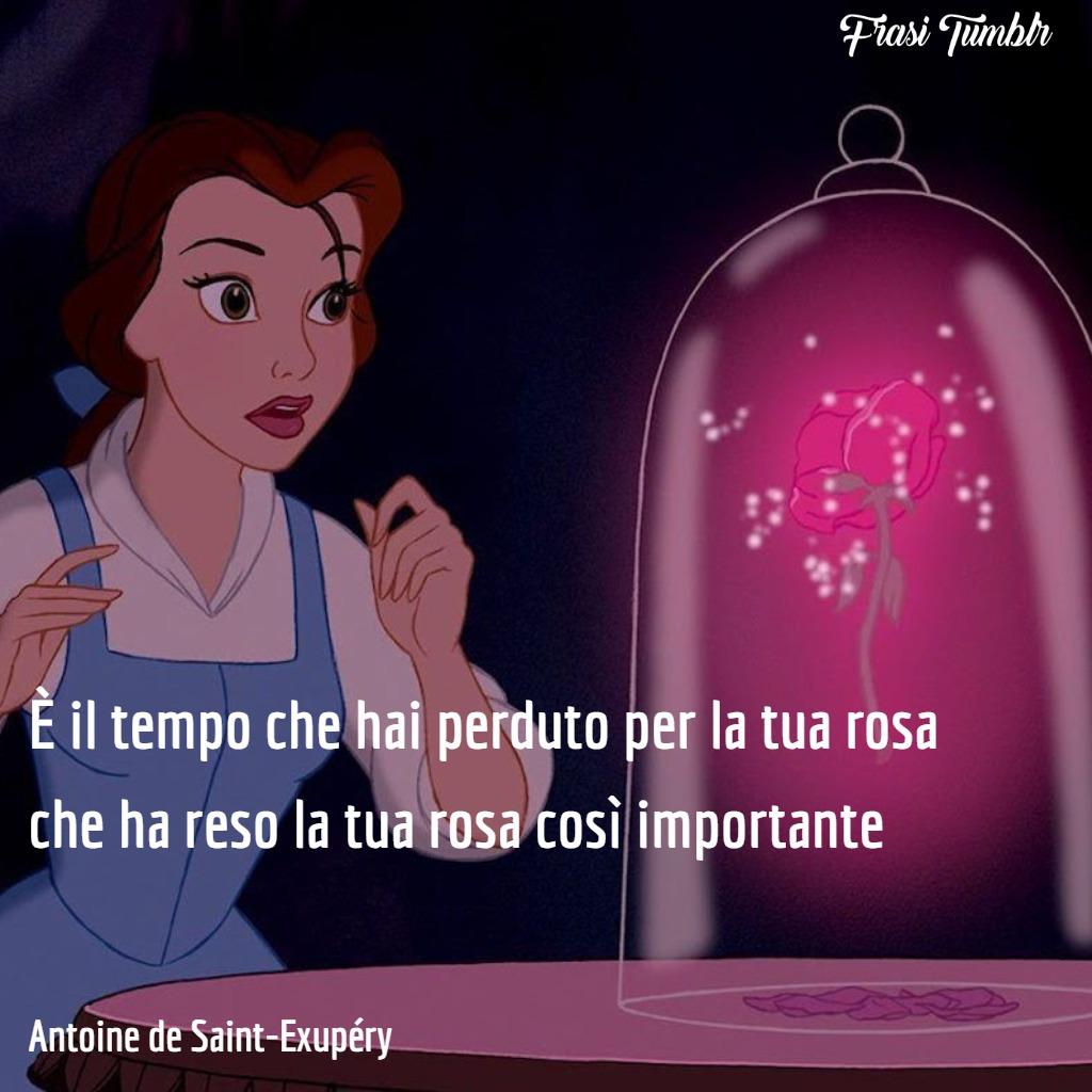 frasi-filosofiche-tempo-perduto-rosa