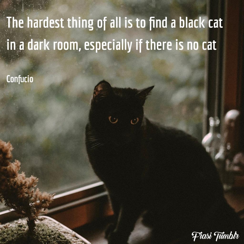 frasi-confucio-inglese-traduzione-gatto-nero