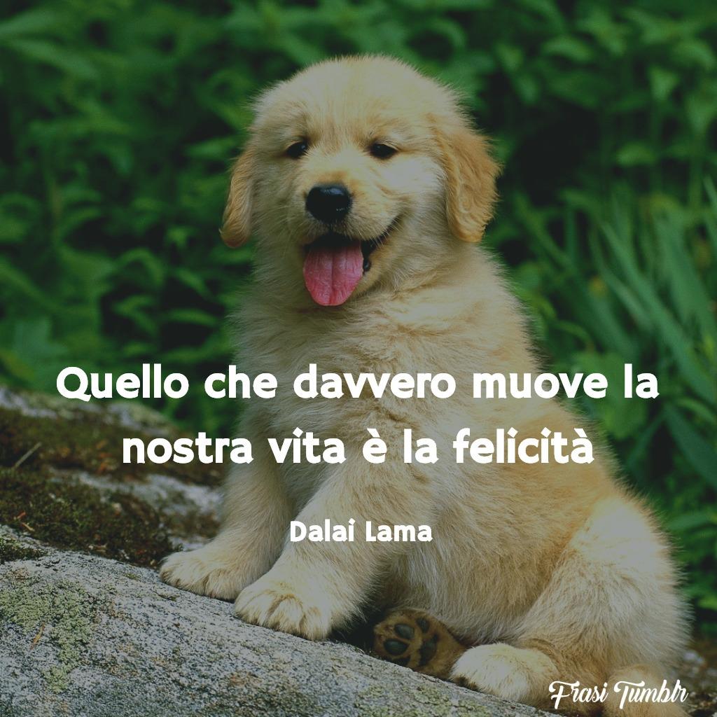 frasi-dalai-lama-vita-felicità