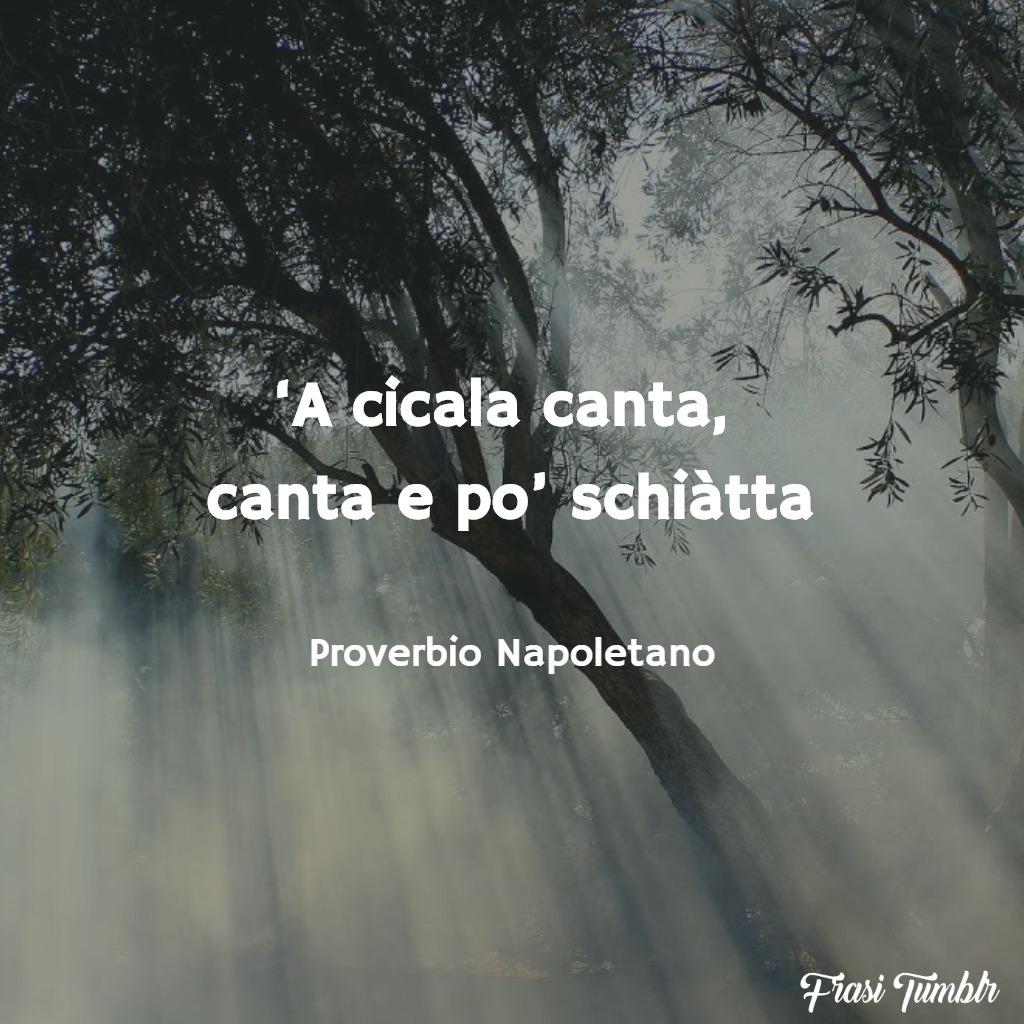 frasi-proverbi-napoletani-cicala