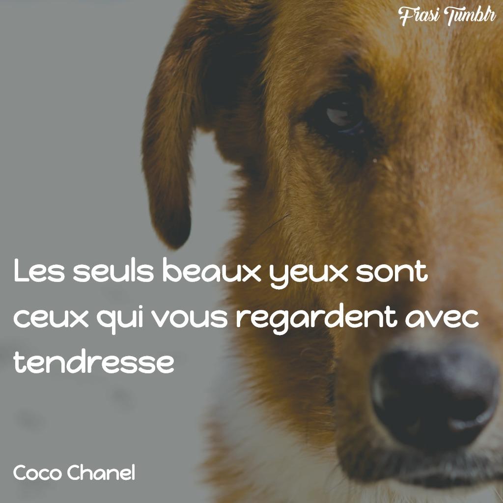 frasi-amore-francese-occhi-dolci