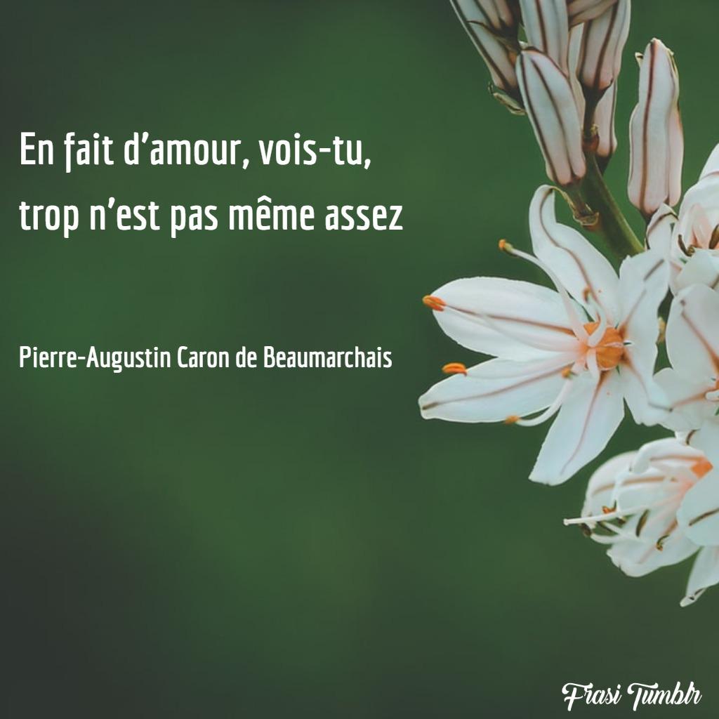frasi-amore-francese-abbastanza