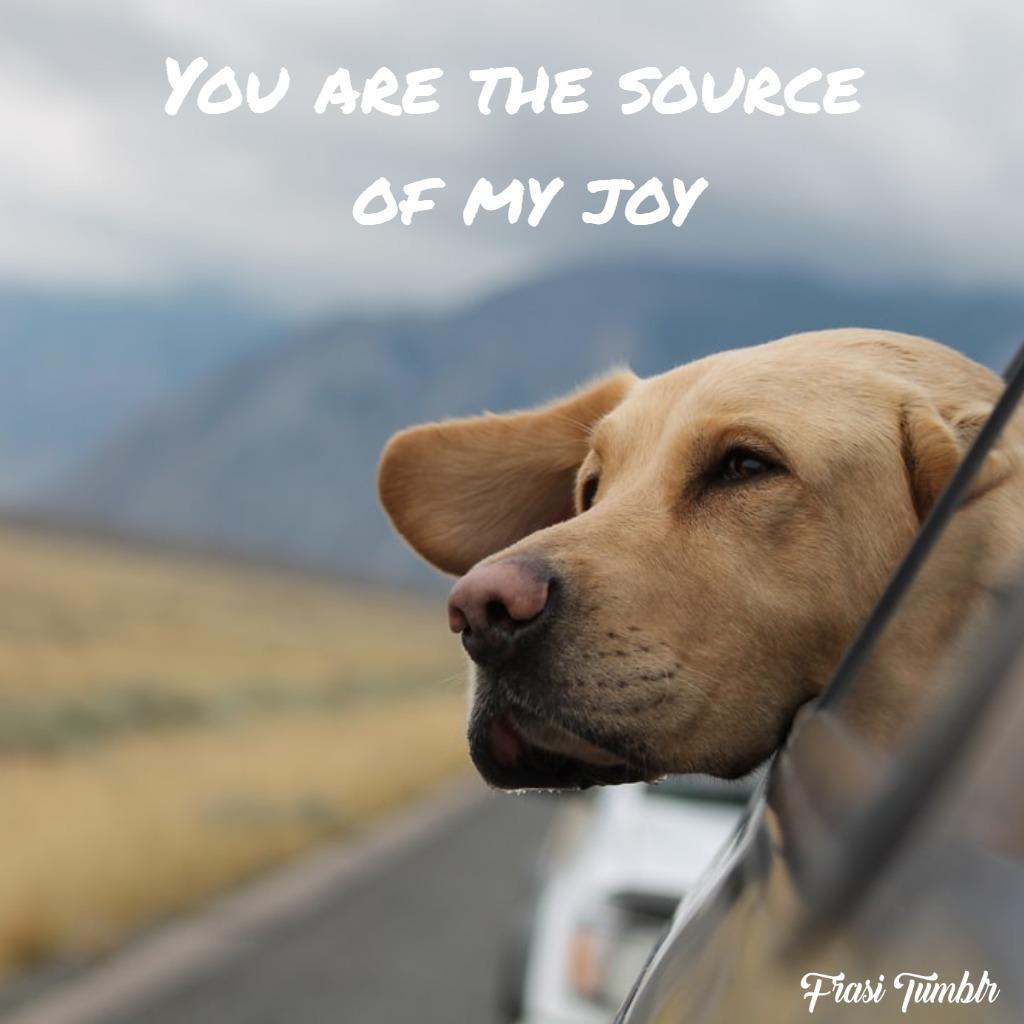 frasi-dolci-inglese-gioia