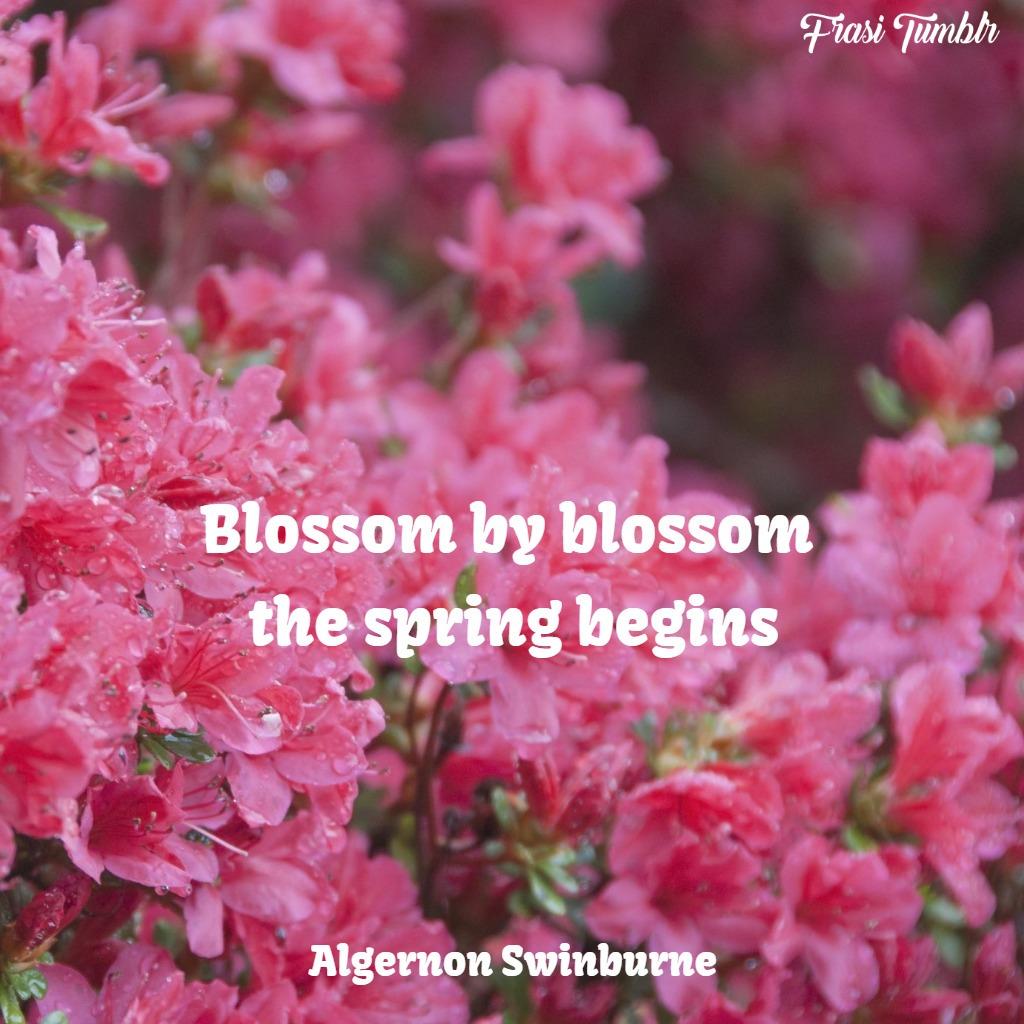 frasi-fiori-inglese-primavera-bellezza