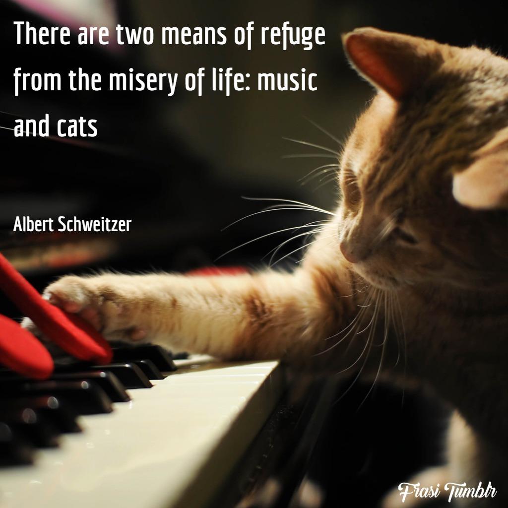 frasi-gatti-inglese-musica