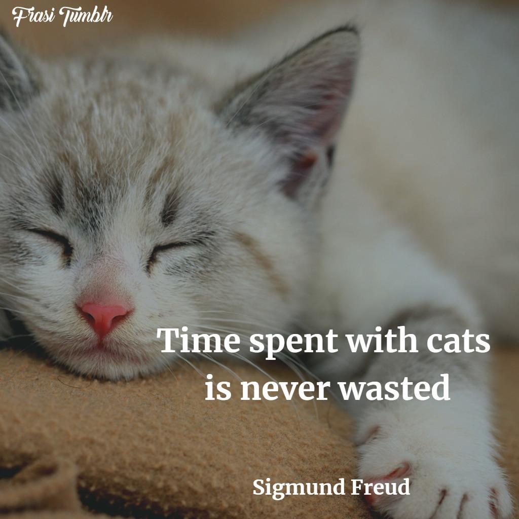 frasi-gatti-inglese-tempo