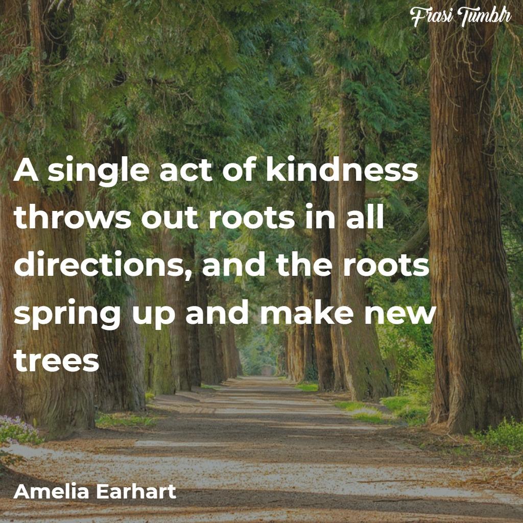 frasi-gentilezza-inglese-alberi-radici