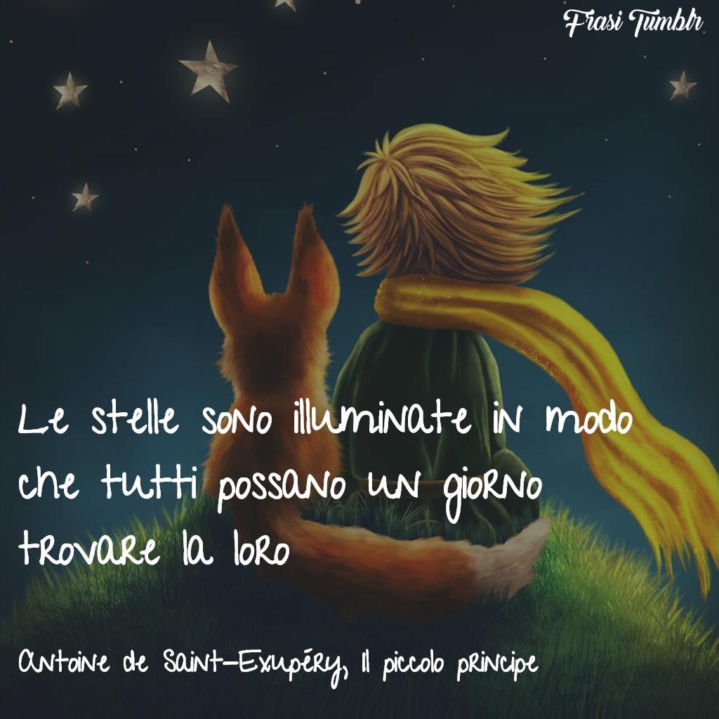 frasi-libri-piccolo-principe-stelle-illuminate