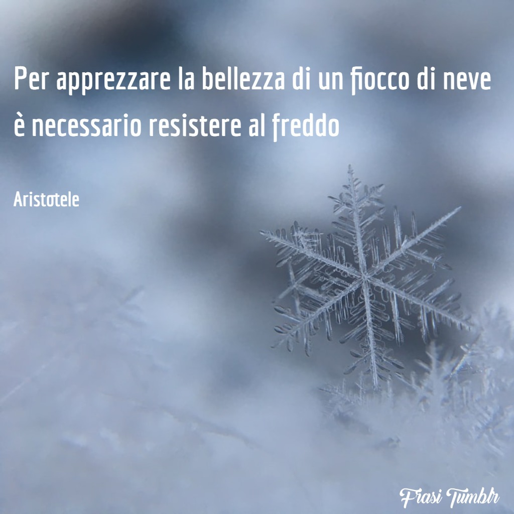 frasi-tumblr-instagram-facebook-whatsapp-bellezza-fiocco-neve-freddo