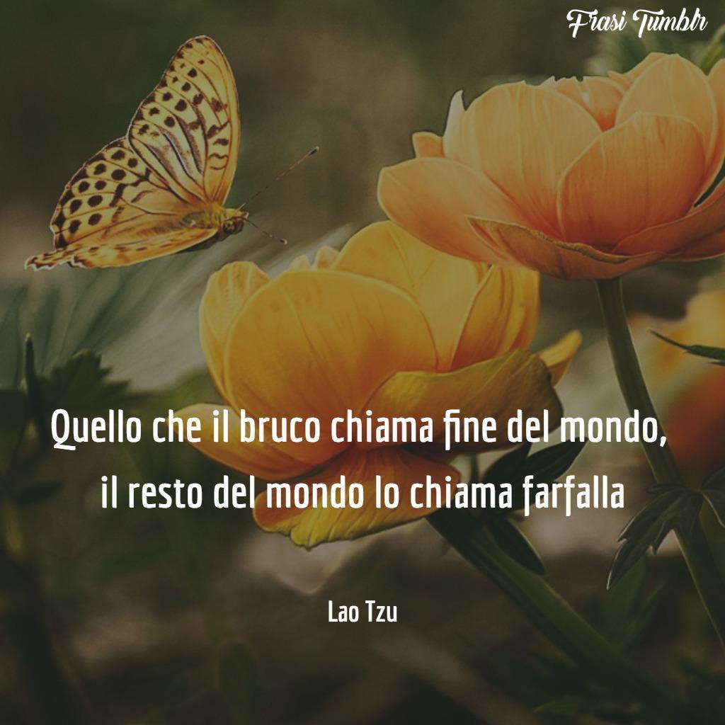 frasi-tumblr-instagram-facebook-whatsapp-bruco-farfalla-fine-mondo