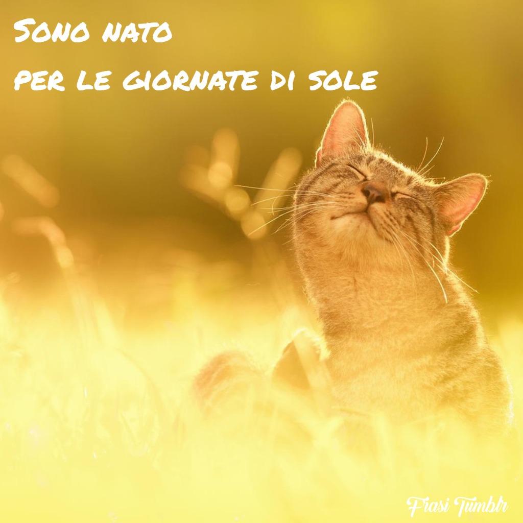 ìimmagini-frasi-buongiorno-divertenti-belle-estate-nato-giornate-sole-1024x1024