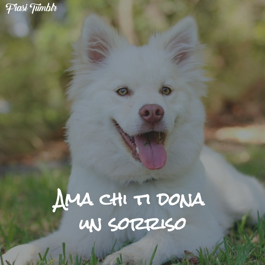 frasi-amore-dona-sorriso