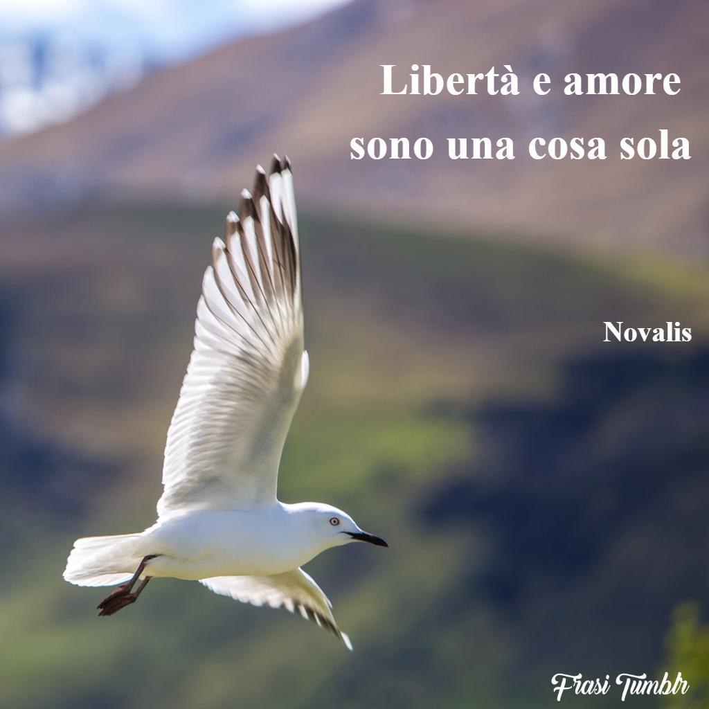 frasi-amore-libertà-cosa-sola