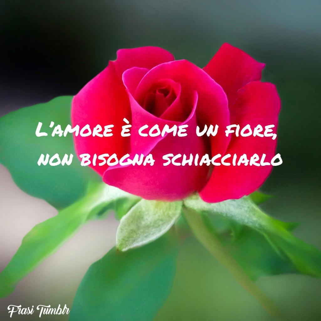 frasi-tristi-amore-fiore-schiacciarlo