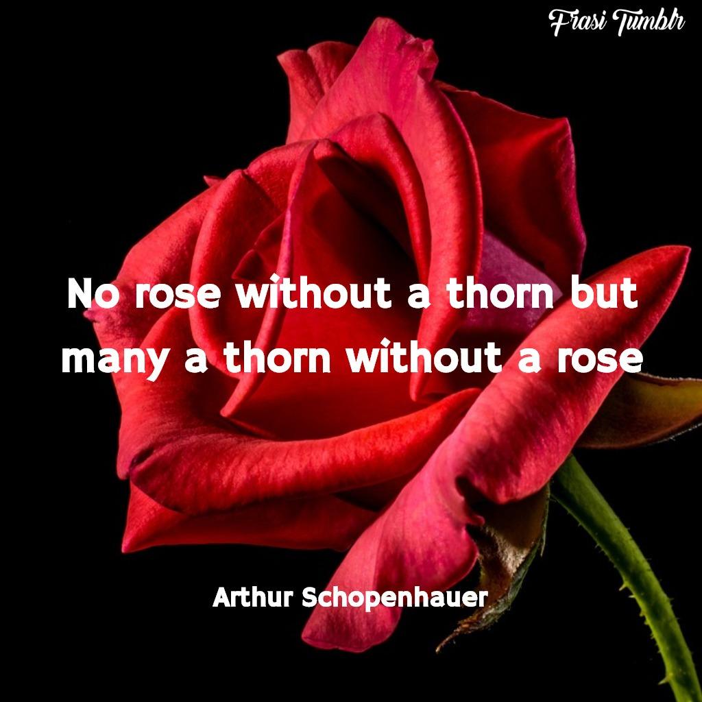 frasi-tristi-inglese-rose-spine
