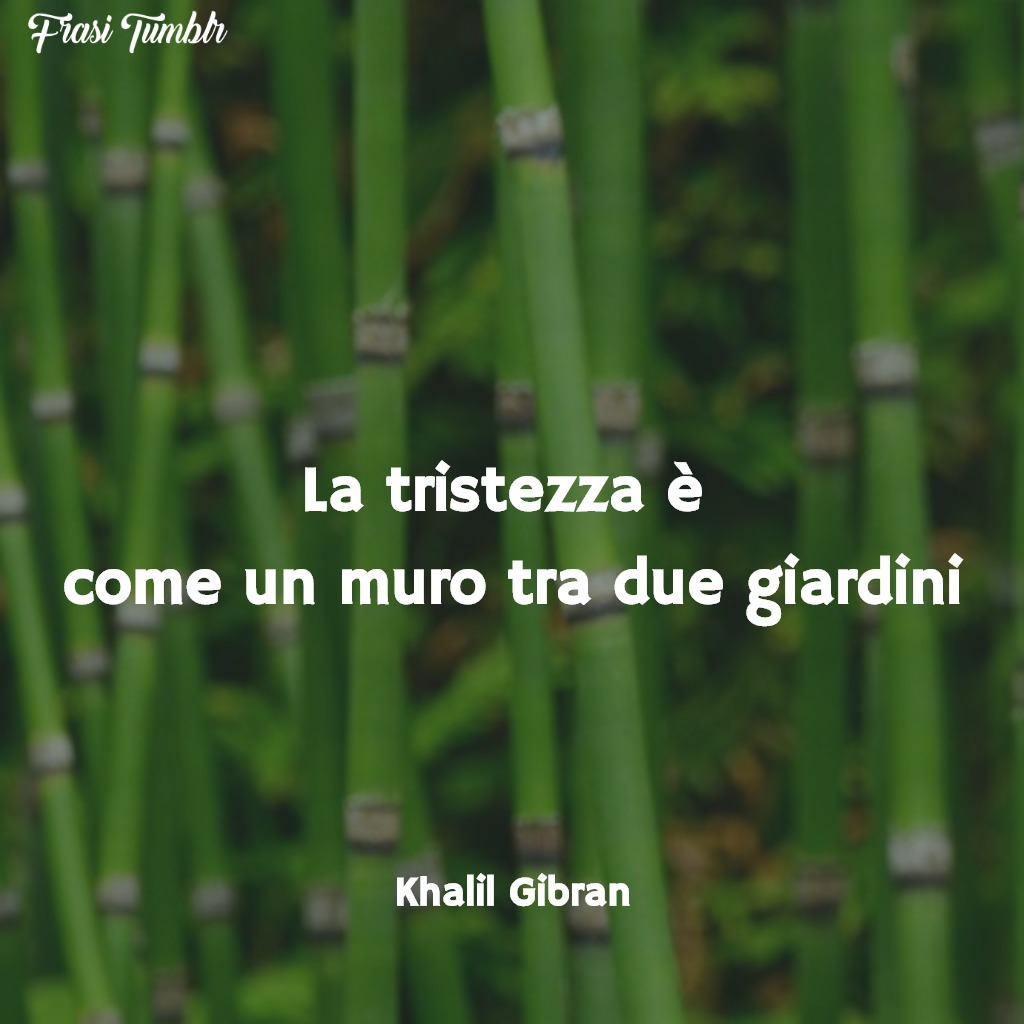 frasi-tristi-tristezza-muro-giardini