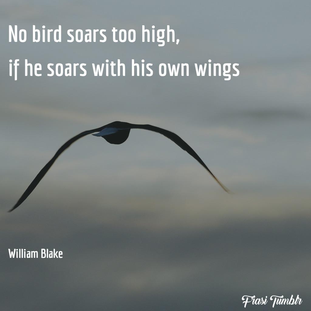 frasi-volare-inglese-uccelli