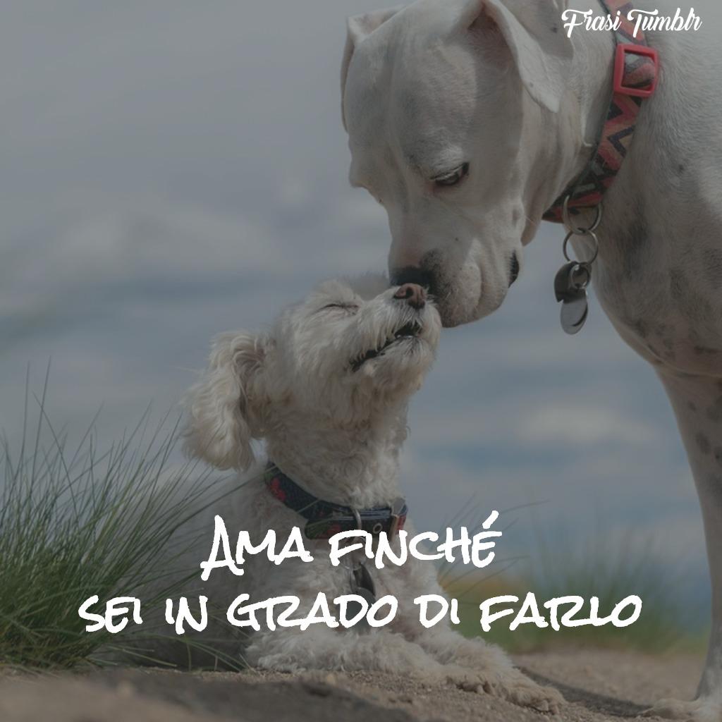 immagini-frasi-amicizia-amore-ama-1024x1024