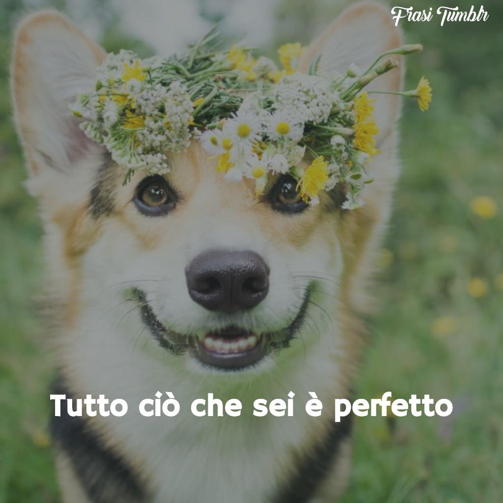 immagini-frasi-amore-amicizia-perfetto-1024x1024
