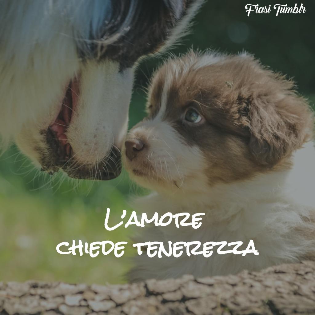 immagini-frasi-buongiorno-amicizia-amore-tenerezza-1024x1024