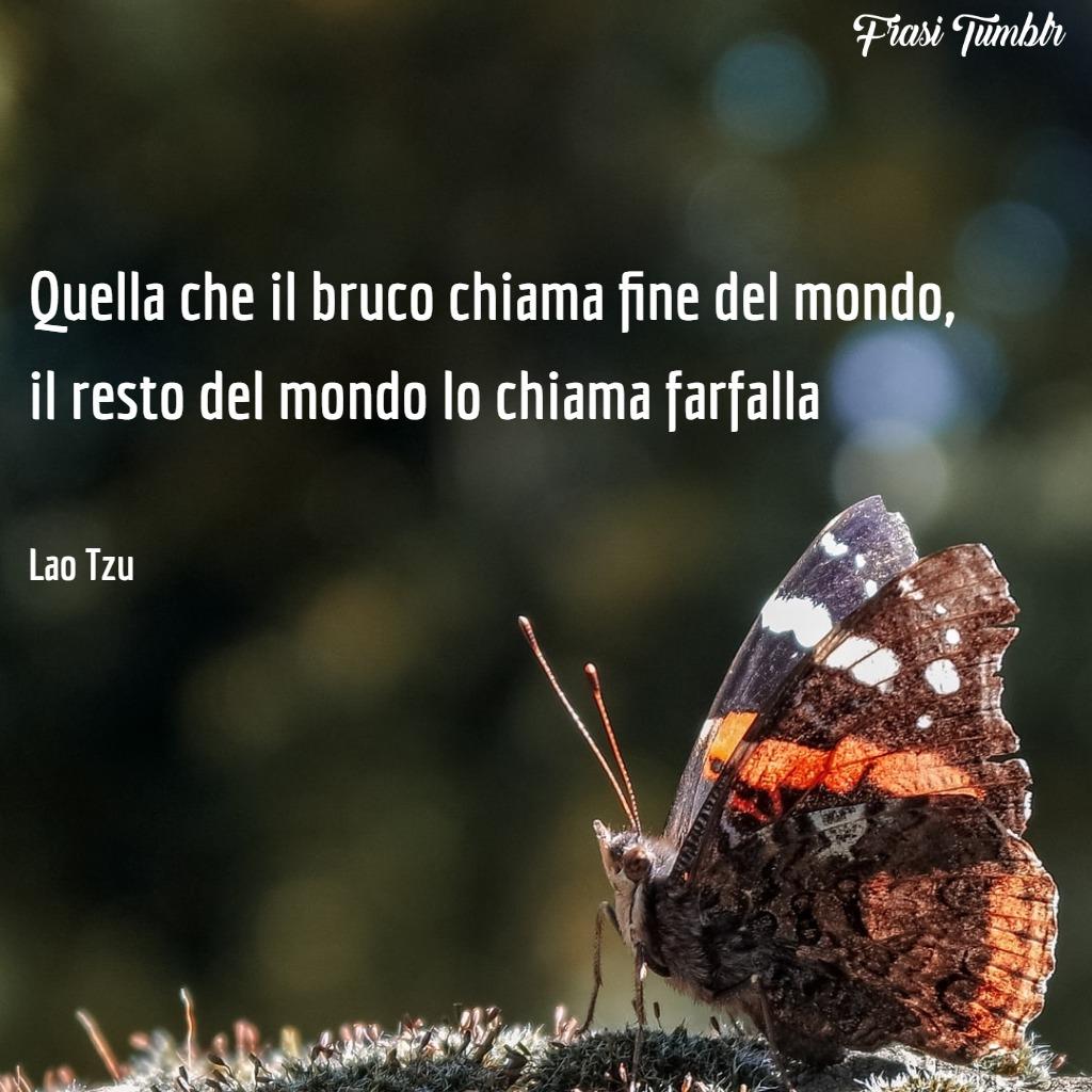 immagini-frasi-vita-mondo-bruco-farfalla-1024x1024