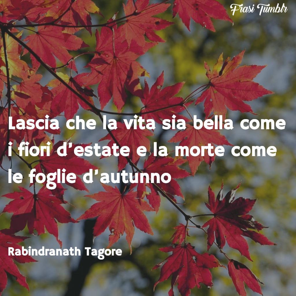 immagini-frasi-vita--morte-zen-vita-fiori-estate-morte-foglie-autunno-1024x1024