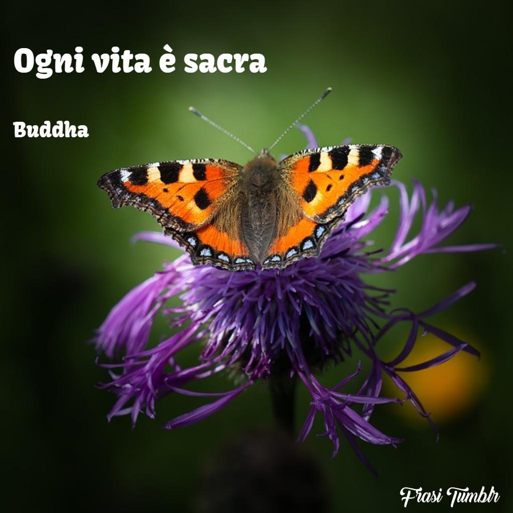 immagini-frasi-vita-tatuaggio-vita-sacra-1024x1024