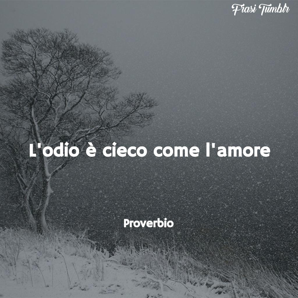frasi-amore-odio-cieco-proverbio