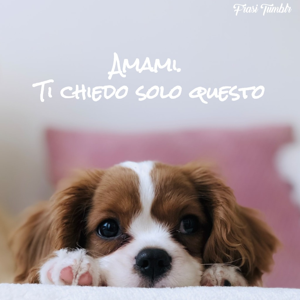 frasi-amore-stati-whats-app-amami