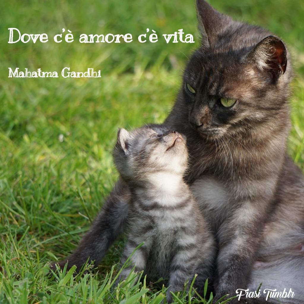 frasi-amore-stati-whats-app-amore-vita-mahatma-gandhi