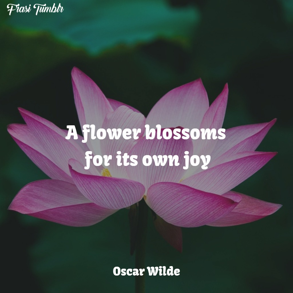 frasi-oscar-wilde-inglese-fiore-sboccia-gioia