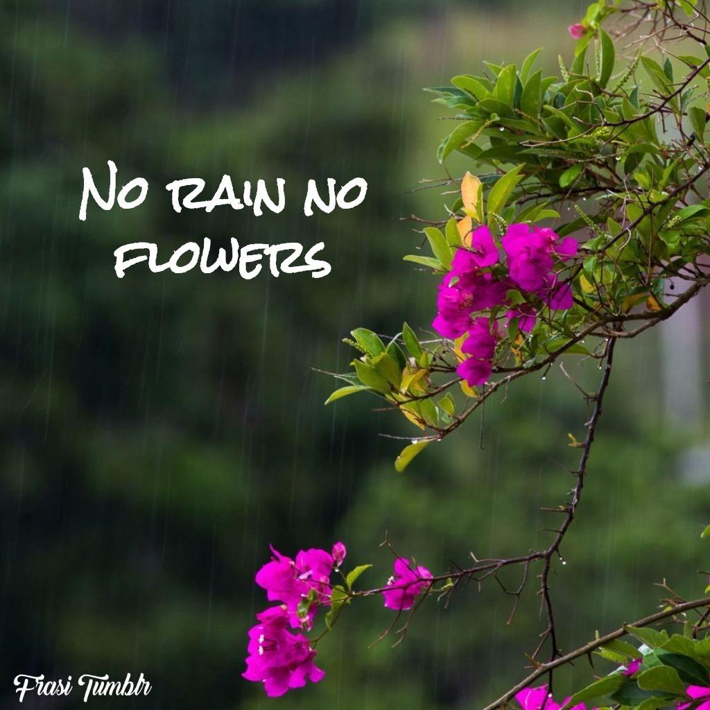 stati-whatsapp-inglese-pioggia-fiori