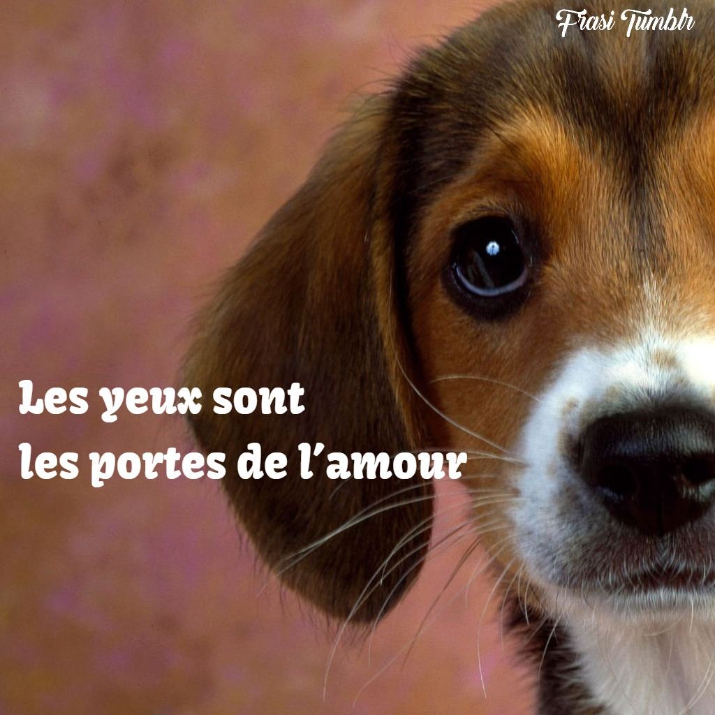 frasi-francese-occhi-amore