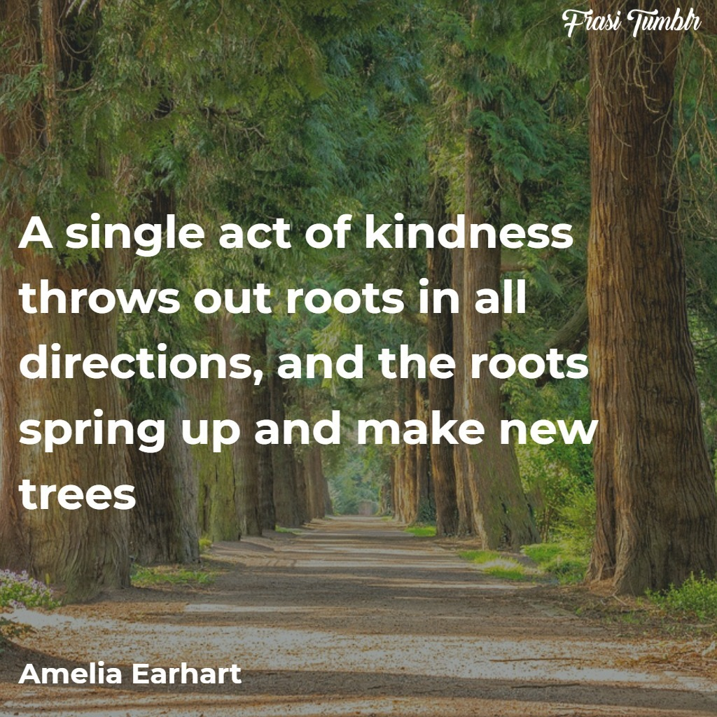 frasi-guerra-inglese-atto-gentilezz-alberi-radici