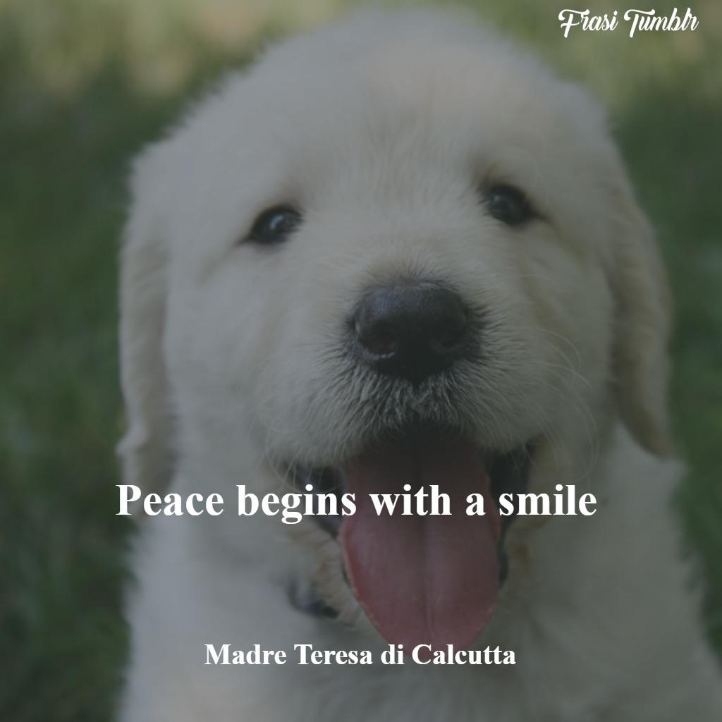 frasi-guerra-inglese-pace-sorriso