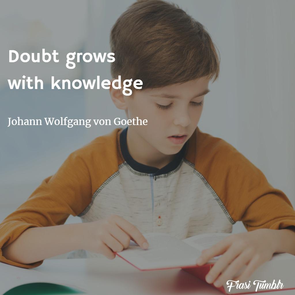 frasi-ignoranza-inglese-dubbio-conoscenza